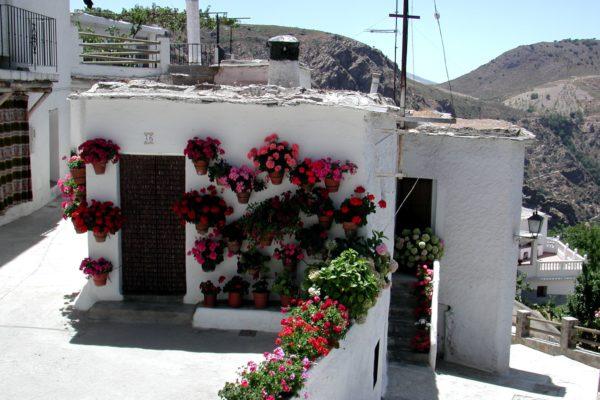 Casa típica alpujarreña