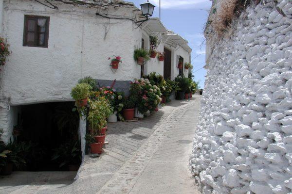 Calle de Pórtugos